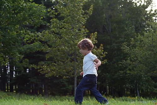 T runs in woods