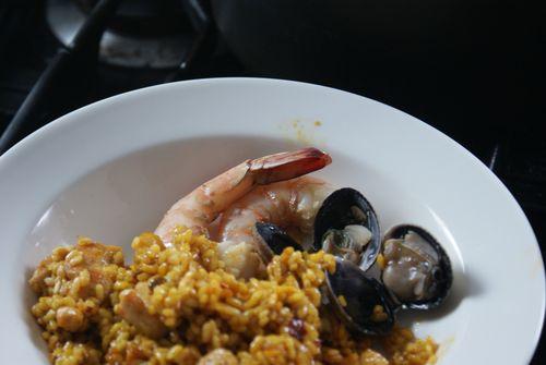 Rice shrimp focus